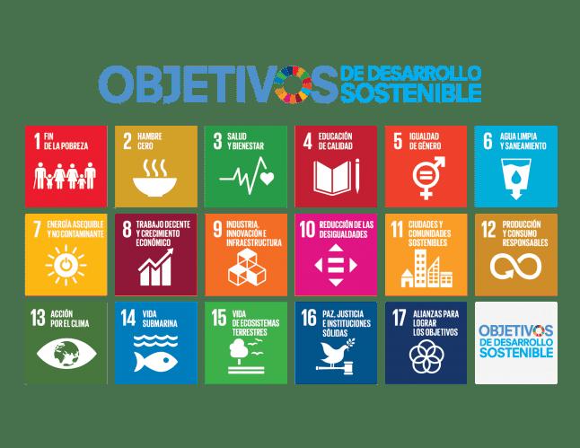Objetivo de Desarrollo Sostenible (ODS)